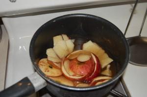 Apple Scraps
